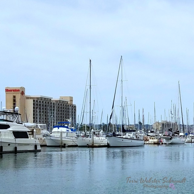 Boats in San Diego Harbor