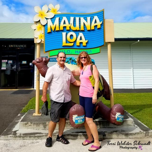Visiting Mauna Loa Macadamia Nut Factory