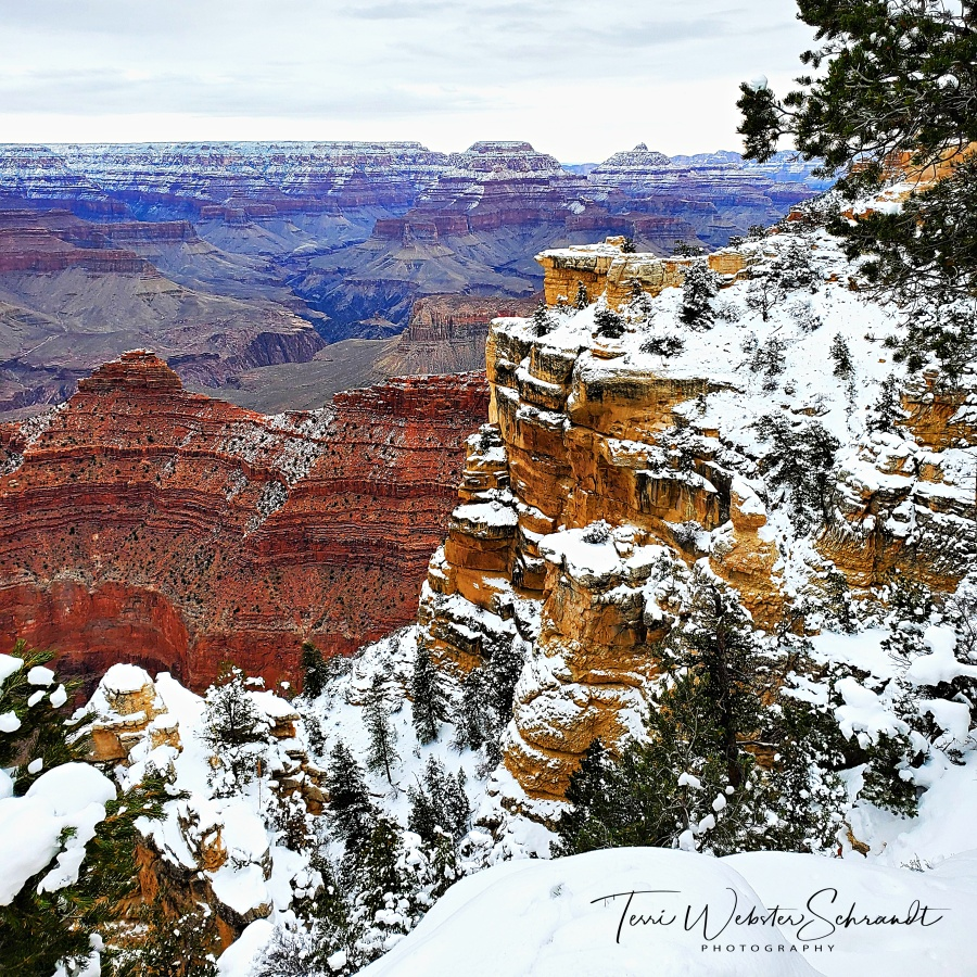 South Rim of the Grand Canyon in snow