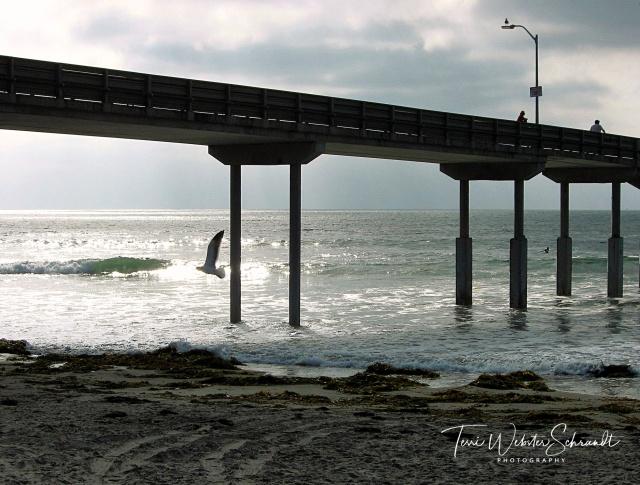 Pier at Ocean Beach