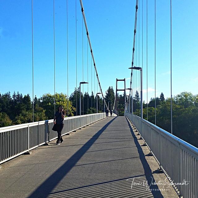 Along the straight and narrow bridge