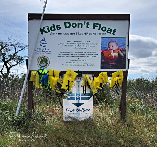 Kids Don't Float