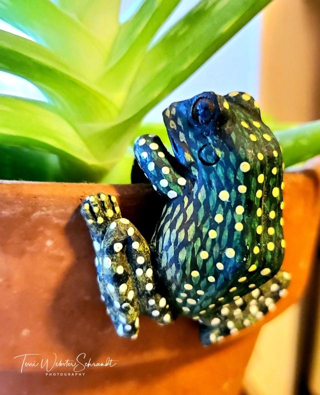 Frog plant hanger
