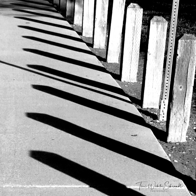Street posts in shadow