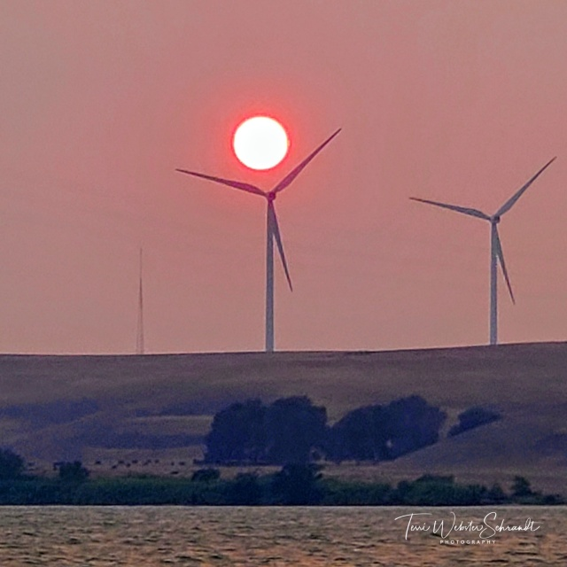 Sunset over wind turbines