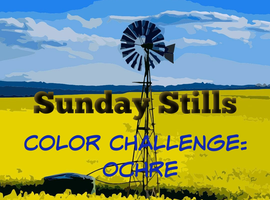 Banner yellow ochre color challenge