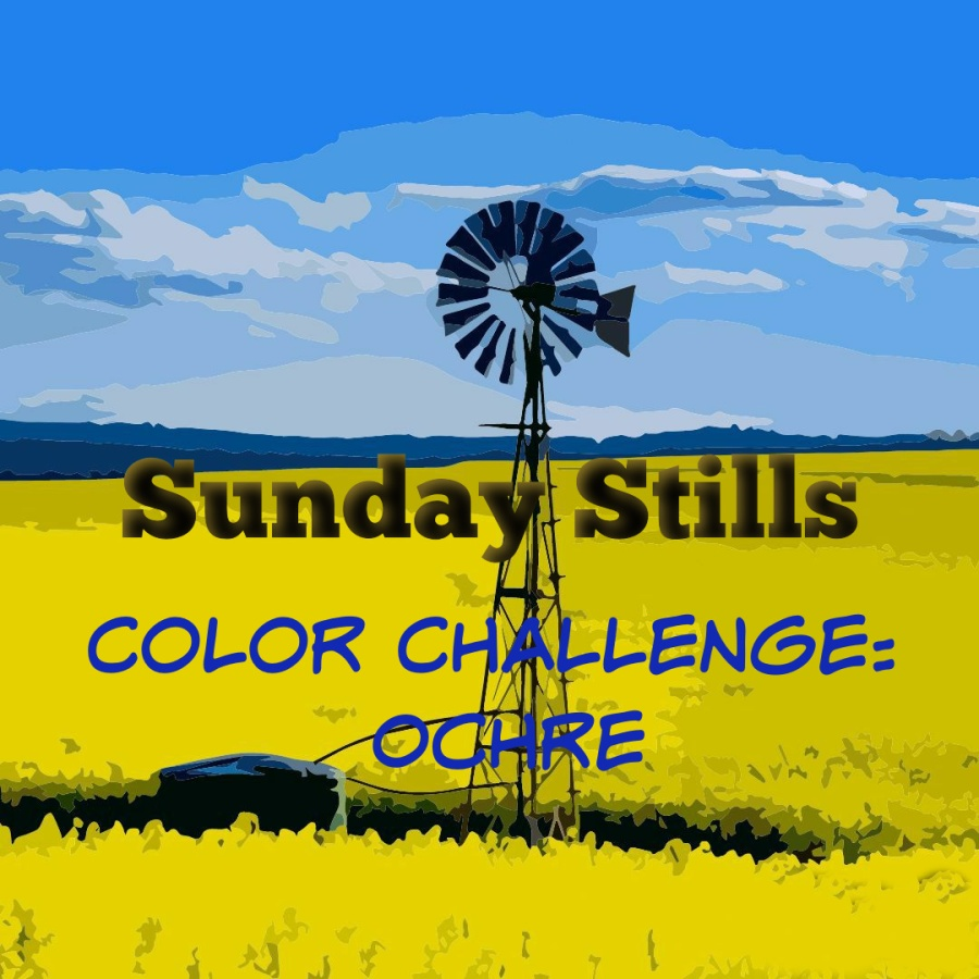Banner yellow ochre color challenge