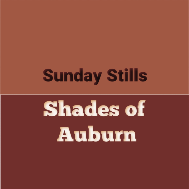 Auburn Color Graphic