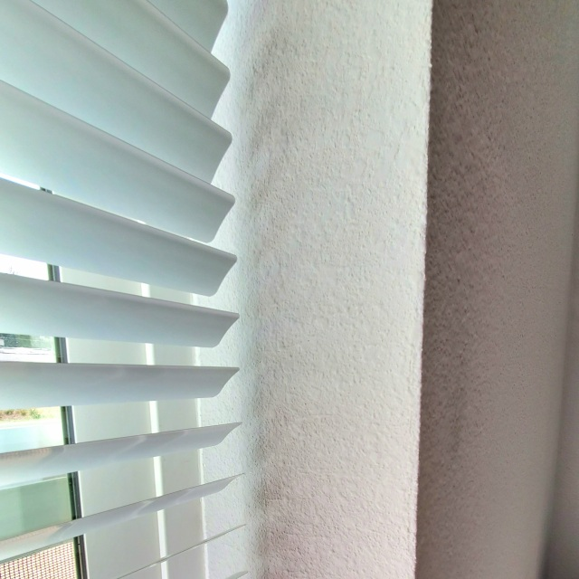 Window Shades of Gray