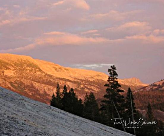 Alpenglow Yosemite Tuolumne Meadows