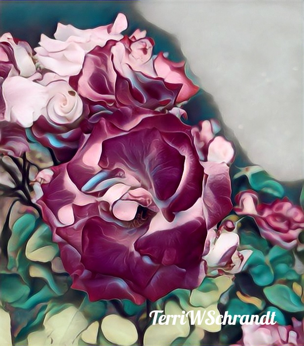 Painnted Rose