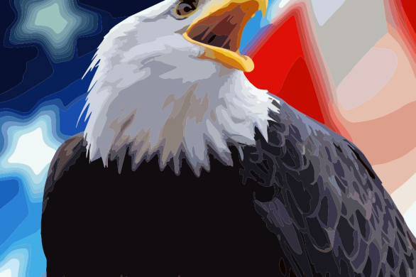 Color Planet Bald Eagle 4th of July